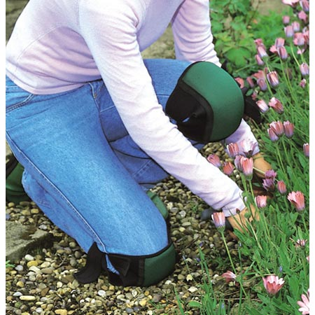 Oztorah 187 Blog Archive 187 Kneeling Amp Gardening Ask The Rabbi