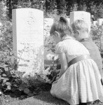 flower grave cemetery