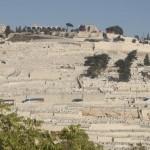 har hazeitim mount of olives jerusalem